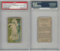 V17 Cowan's, Noted Cats, 1925, #7 His Majesty of Whitehall, PSA 4.5 VGEX+