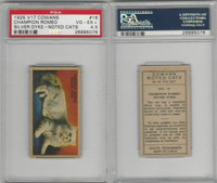 V17 Cowan's, Noted Cats, 1925, #16 Champion Romeo, PSA 4.5 VGEX+