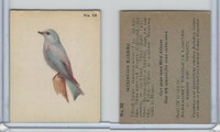 V339-2 Parkhurst, Audubon Society Birds, 1952, #28 Mountain Bluebird