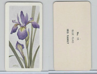 FC34-4 Brook Bond, Wild Flowers NA, 1961, Printer Proof, #11 Blue Flag