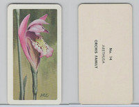 FC34-4 Brook Bond, Wild Flowers NA, 1961, Printer Proof, #14 Arethusa