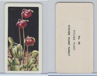 FC34-4 Brook Bond, Wild Flowers NA, 1961, Printer Proof, #24 Pitcher Plant