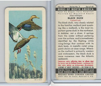 FC34-5 Brook Bond, Birds North America, 1962, #12 Black Duck
