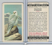 FC34-5 Brook Bond, Birds North America, 1962, #28 Gyrfalcon