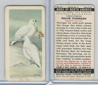 FC34-5 Brook Bond, Birds North America, 1962, #31 Willow Ptarmigan