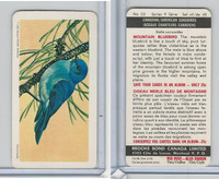 FC34-10 Brook Bond, Canadian/Am. Songbirds, 1966, #23 Mountain Bluebird