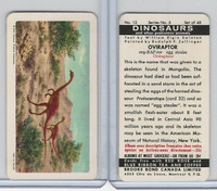 FC34-6 Brook Bond, Dinosaurs, 1963, #12 Oviraptor