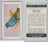 FC34-1 Brook Bond, Songbirds North America, 1959, #1 Indigo Bunting