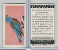 FC34-1 Brook Bond, Songbirds North America, 1959, #11 Western Bluebird