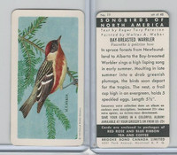 FC34-1 Brook Bond, Songbirds North America, 1959, #19 Bay-Breast Warbler
