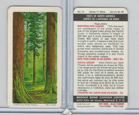 FC34-12 Brook Bond, Trees North America, 1968, #14 Western Red Cedar