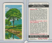 FC34-12 Brook Bond, Trees North America, 1968, #30 American Elm