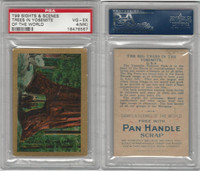 T99 ATC, Sights & Scenes, 1911, Big Trees in Yosemite, PSA 4 MK VGEX