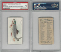 T407 American Tobacco Company, Fish From American Waters, 1910, Mullet, PSA 5 EX