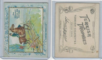 T62 Turkish Trophies, Fortune Series, 1910, Are Unusually Active, Horse