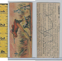 Victorian Card, 1890's, Kinney, W Medicine, Hunting, Dog, Rabbits