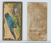 E226 Lowneys Chocolates, Bird Series, 1920's, Indigo Bunting