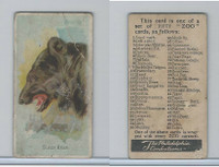 E29 Philadelphia Caramel, Zoo Cards, 1907, Black Bear