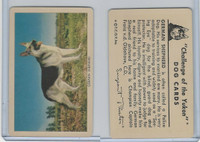F279-5 Quaker, Challenge of the Yukon, Dog Cards, 1950, German Shepherd