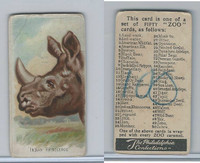 E29 Philadelphia Caramel, Zoo Cards, 1907, Indian Rhinoceros