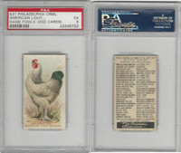 E31 Philadelphia, Zoo Cards, Game Fowl, 1907, American Light Brahma, PSA 5 EX