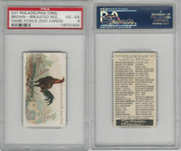 E31 Philadelphia, Zoo Cards, Game Fowl, 1907, Brown BR Game Cock, PSA 4 VGEX
