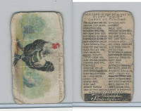 E31 Philadelphia, Zoo Cards, Game Fowl, 1907, Dark Brahma Cockerel