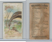 N25 Allen & Ginter, Wild Animals, 1888, Ant Eater (B)