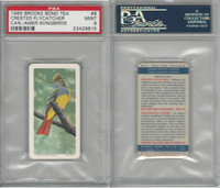 F450-7 Brook Bond, Canadian/Am Songbirds, 1966, #9 Flycatcher, PSA 9 Mint