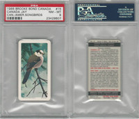 F450-7 Brook Bond, Canadian/Am Songbirds, 1966, #15 Jay, PSA 8 NMMT