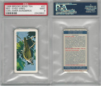 F450-7 Brook Bond, Canadian/Am Songbirds, 1966, #27 Vireo, PSA 9 Mint