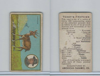 E27 American Caramel, Teddy's Trophies, 1920's, Antelope