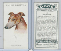 P72-90 Player Tobacco, Dogs, 1929, #16 Greyhound