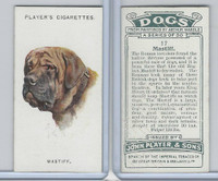 P72-90 Player Tobacco, Dogs, 1929, #17 Mastiff