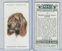 P72-90 Player Tobacco, Dogs, 1929, #19 Rough Coated Otter Hound