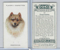 P72-90 Player Tobacco, Dogs, 1929, #22 Pomeranian