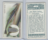 W62-187 Wills, Wonders of the Sea, 1928, #14 Snake Sucker Fish