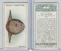 W62-187 Wills, Wonders of the Sea, 1928, #15 Sun Fish