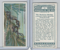 W62-187 Wills, Wonders of the Sea, 1928, #20 Skeleton Shrimp