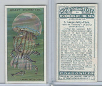W62-187 Wills, Wonders of the Sea, 1928, #24 Large Jelly Fish