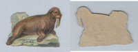1890's Y95 Victorian Diecut, Animal, Seal, ZQL