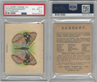 FC2, Harry Horne Co, Butterflies, 1920's Canada, # Fourteen, PSA 6.5 EXMT+