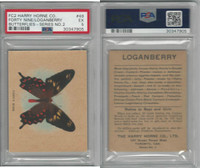FC2, Harry Horne Co, Butterflies, 1920's Canada, # Forty Nine, PSA 5 EX