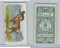 W62-430 Wills, Wild Animals of the World, 1900, Big Horn Sheep