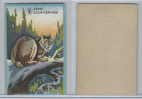 V2 Cowan, Animal Cards, 1920's, (Trimmed) #16 Lynx