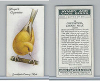 P72-66 Player, Aviary & Cage Birds, 1933, #16 Greenfinch Canary Mule