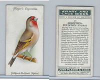 P72-66 Player, Aviary & Cage Birds, 1933, #18 Goldfinch Bullfinch Hybrid
