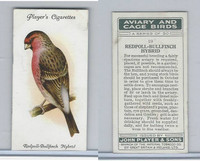 P72-66 Player, Aviary & Cage Birds, 1933, #19 Redpoll Bullfinch Hybrid