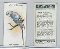 P72-66 Player, Aviary & Cage Birds, 1933, #21 Blue Budgerigar