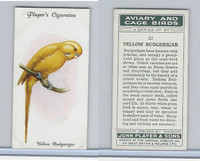 P72-66 Player, Aviary & Cage Birds, 1933, #22 Yellow Budgerigar